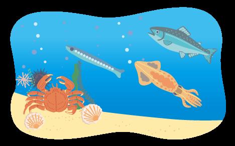 海イメージ2